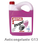 Anticongelante-G13